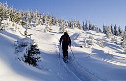Winterurlaub in Philippsreut Bayerischer Wald